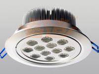 LED Ceiling Lamp 12x1W