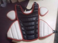 Softballl catcher chest protector
