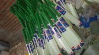 Rounder Cricket Bat