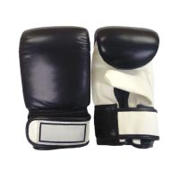 Boxing Bags Mitts