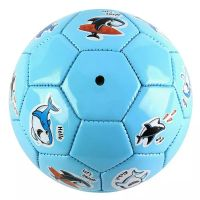 Quality Soccer Ball