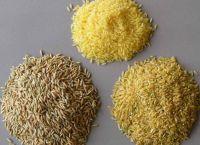 Rice - Thailand, India, Vietnam, Pakistan, ect.
