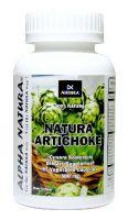 Artichoke - Bottle of 90 capsules (500 mg)