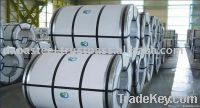 Steel Coils (Galvanized Coil | Hot Rolled | Hot Dipped)