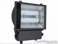 Electrodeless Lamp for Flood Lamps