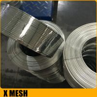 2x0.65mm galvanized flat wire