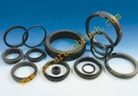 graphite seal, graphite gaskets, carbon seal, graphite carbon bearings