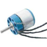 Brushless motor  ABS-2225