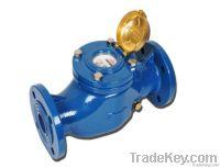 Teksan TR Industrial Water Meter