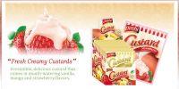 Custard / Pudding