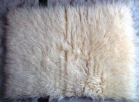 Flokati Rugs - 100% Woolen