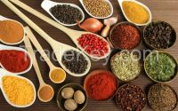 MDH Spices, Everest Spices, Emperor Spices
