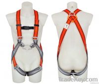 Safety Harness - 2 D Ring