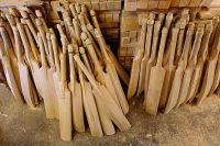 Plain Cricket Bats