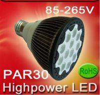 LED PAR30 bulb (RL-PAR30W15)