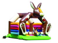 Inflatable Bouncer (TC-077)