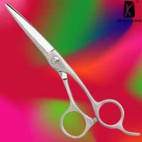 Hitachi Hair Scissors