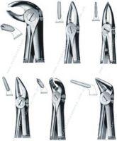 Dental Forcep