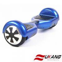 Self balancing electric scooter two wheel FK650A