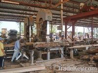 Timber & Lumber