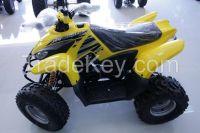 Desert Cat 100cc Quad bike ATV