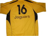 Custom made Cricket kit, uniform, jersey,
