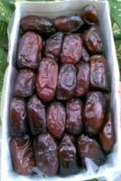 Fresh Dates (Khajoor)