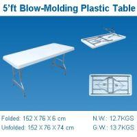5'ft folding table