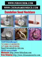 Make a Wish Good Luck Charm, Real Dandelion Glass Pendant, Make a Wish Glass Bead Necklace,