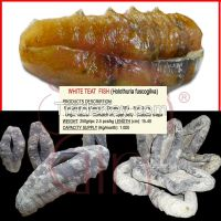 Dried Sea Cucumber: curry fish, white teat fish, sand fish, black fish