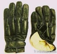Motorcycle Gloves (Riding