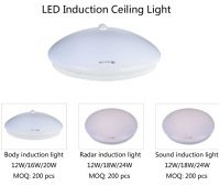 LED induction down light, induction tube light, induction ceiling light