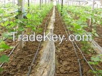 High Quality Drip Irrigation tape for Agriculture
