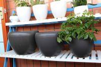 matte black colour Contemporary Round Small ceramic flower pot chrome gardenpots