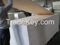 C-2 white birch plywood for US market