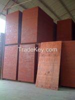 pine construction plywood, pine shuttering formwork, shutterply