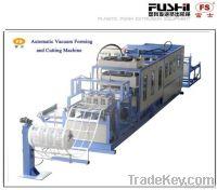 Automatic Vacuum Forming Machine & Cutting Machine