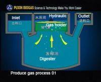 PUXIN family size biogas