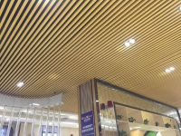 interior decorative waterproof and fireproof plastic wall sheet