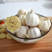 China Factory Exporter 2017 New Crop Normal White Garlic, Pure White Garlic