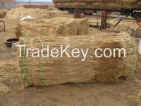 roofing reed