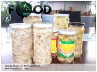 2.84L Canned champion mushroom Piece canned mushroom piece and stem