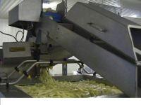 Potato French Fries processing plant equipment