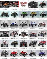 Access Motor ATV/UTV/Mini ATV Catalogue