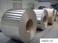 Tin Plate and Tin Coil