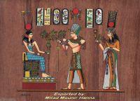 Brown papyrus