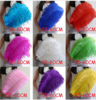 OSTRICH FEATHERS, OSTRICH EGGS ,LIVE STOCK PRODUCTS, COWS ,GOATS