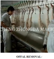 Full Halal Chicken Slaughter machine Production Line