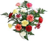 Cut Flowers & Exotic Vegetables
