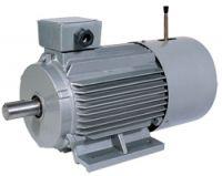 YEJ Series Electromagnetic Brake Motor